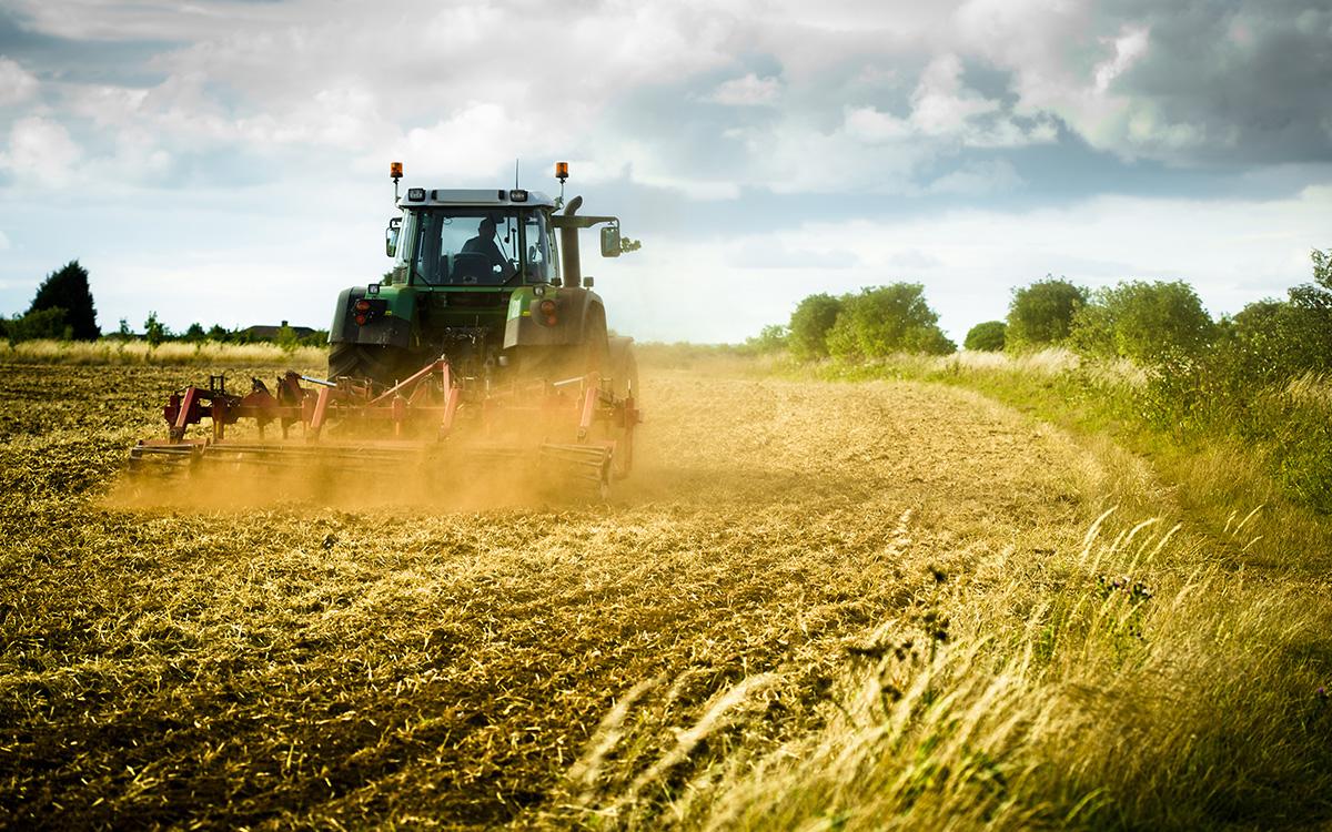 Od 1 grudnia nowe dopłaty dla rolnictwa.